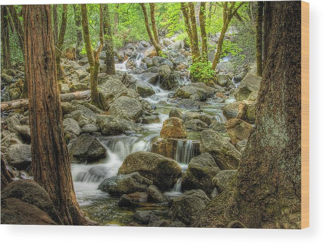 Landscape Wood Print featuring the photograph Bridal Veil Stream-yosemite Valley-h by Neil Doren