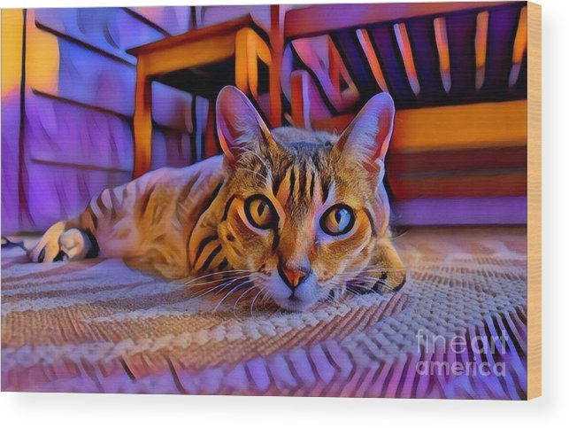 Animal Wood Print featuring the photograph Cat Laying On Braided Rug by Tarisa Smith