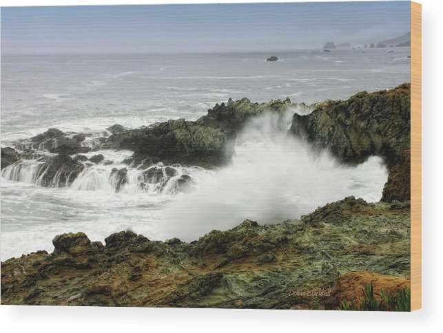Coast Wood Print featuring the photograph Coastal Expressions by Donna Blackhall