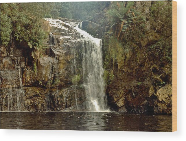Waterfalls Wood Print featuring the photograph Forth Falls Tasmania by Sarah King