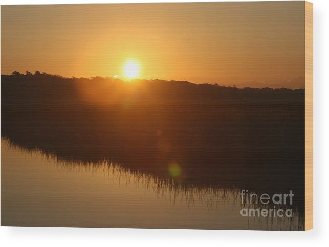 Glow Wood Print featuring the photograph Gold Morning by Nadine Rippelmeyer