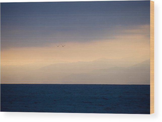 Ocean Wood Print featuring the photograph In Flight by Brad Rickerby