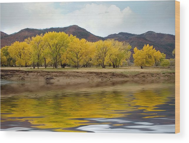 River Wood Print featuring the photograph Las Animas Fall by Jerry McElroy