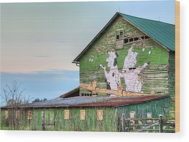 Lets Dance Wood Print featuring the photograph Lets Dance by JC Findley