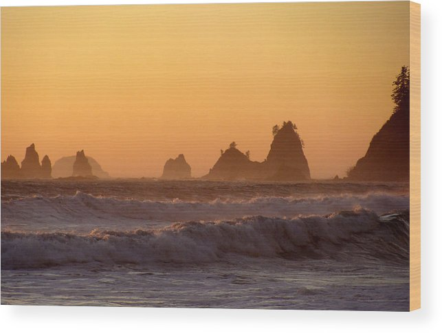 Nautre Wood Print featuring the photograph Olympic Sunset by Ty Nichols