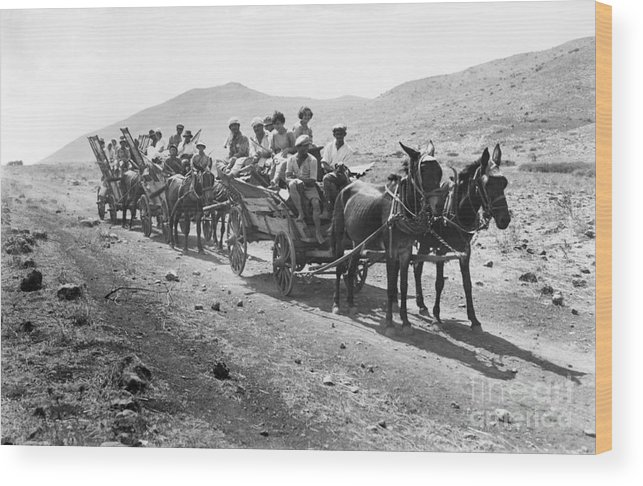 1920 Wood Print featuring the photograph Palestine Colonists, 1920 by Granger