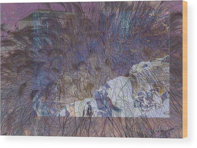 Rocks Wood Print featuring the photograph Petroglyphs 4 by Carol Everhart Roper