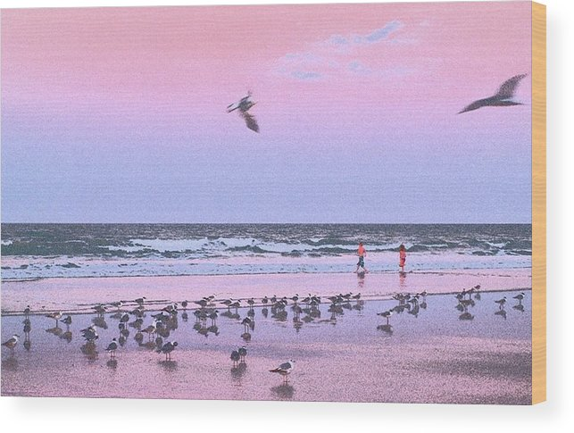 Beach Wood Print featuring the photograph Play At The Beach by Laura Regier