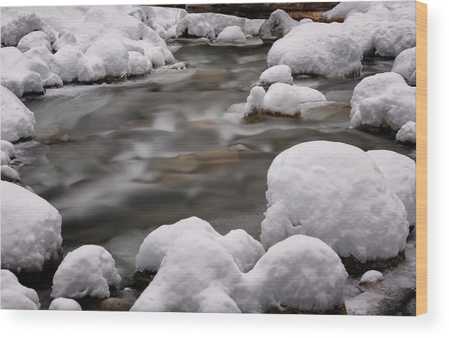 Stickney Brook Wood Print featuring the photograph Snowy Stickney Brook by Tom Singleton