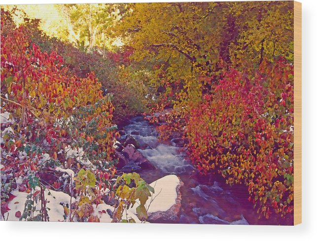 Stream Wood Print featuring the photograph Stream In Autumn by Steve Ohlsen