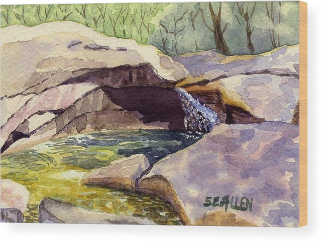 The Basin Wood Print featuring the painting The Basin by Sharon E Allen