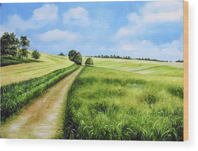Derby Wood Print featuring the painting The Derbyshire Dales by Sean Afford