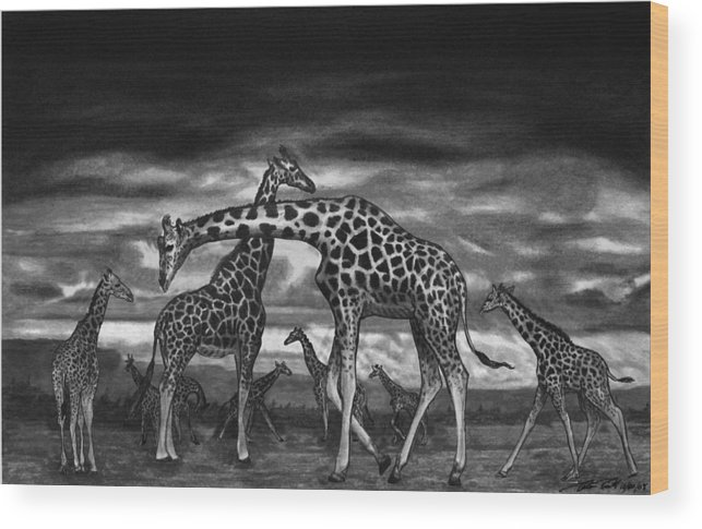The Herd Wood Print featuring the drawing The Herd by Peter Piatt