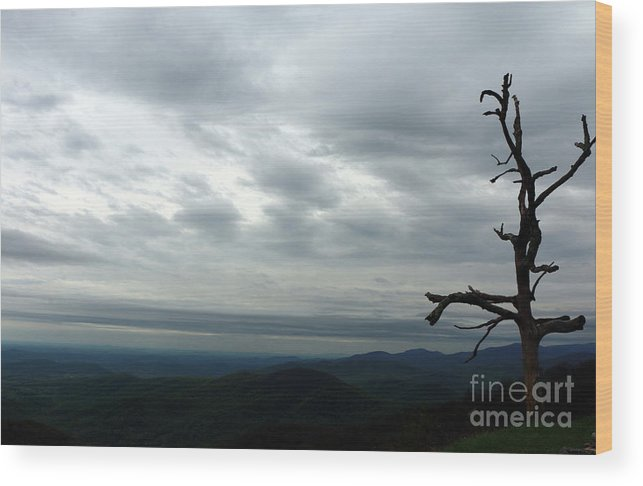 Blue Ridge Mountians Wood Print featuring the photograph Watching Over Shenandoah Valley by Christiane Schulze Art And Photography