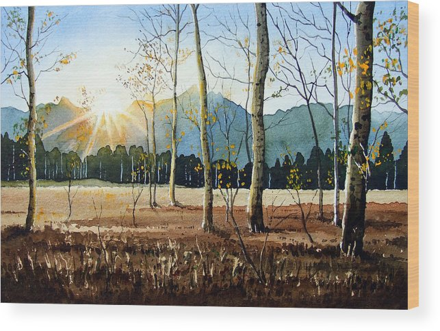 Landscape Wood Print featuring the painting Woodland Sunset by Paul Dene Marlor