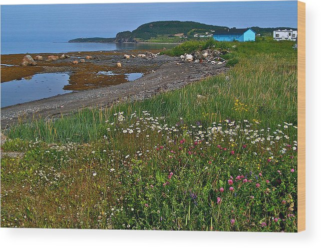 Rocky Harbour In Gros Morne Np Wood Print featuring the photograph Rocky Harbour In Gros Morne Np-nl by Ruth Hager