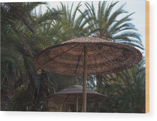 Beach Wood Print featuring the photograph Beautiful Beach With Palm Trees by Frank Gaertner