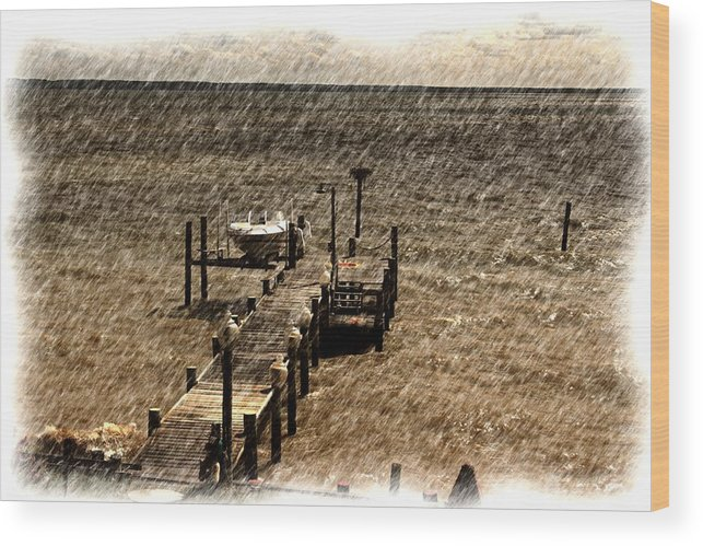 Landscape Wood Print featuring the photograph Dock by Ronald Olivier