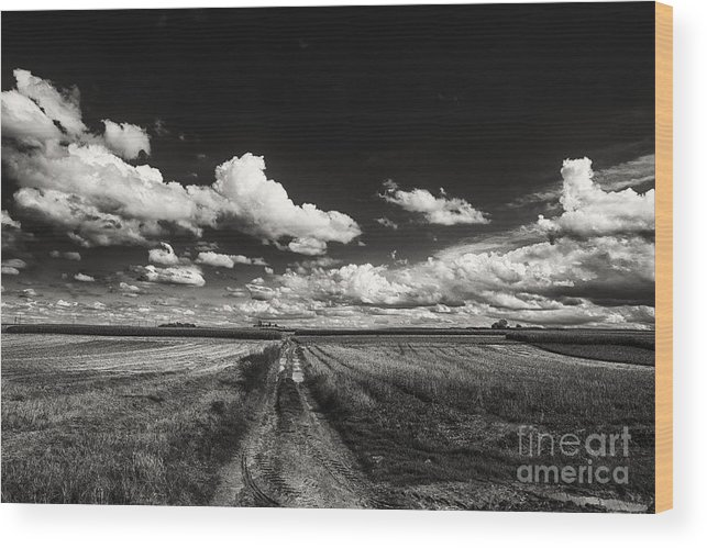 Blue Skies Landscape Wood Print featuring the photograph Drifting Clouds by Brothers Beerens