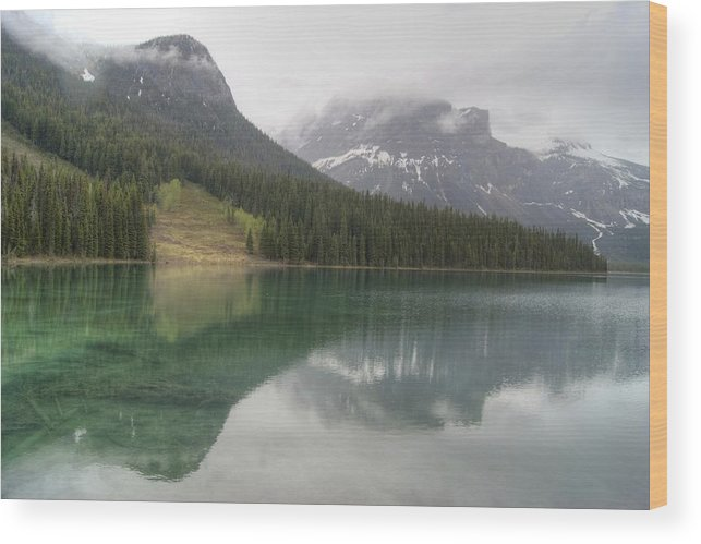 Emerald Lake Wood Print featuring the photograph Emerald Lake by David Birchall