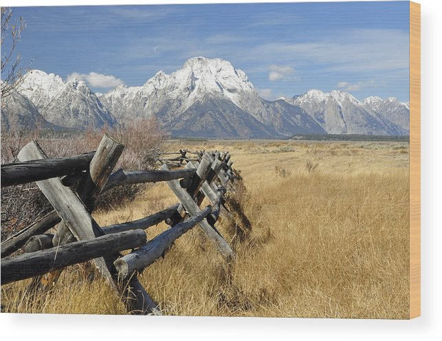 Grand Tetons Wood Print featuring the photograph Grand Teton Nat'l Park by Wendy Elliott