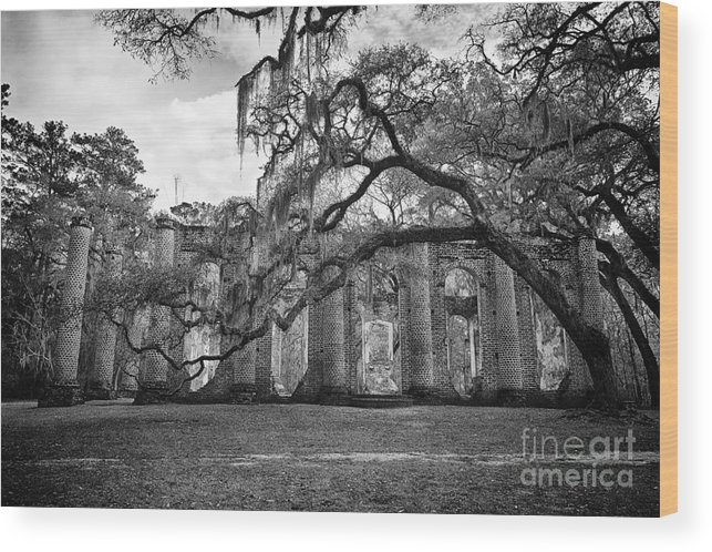 Old Sheldon Church Wood Print featuring the photograph Historic Sheldon Church 4 Bw by Carrie Cranwill