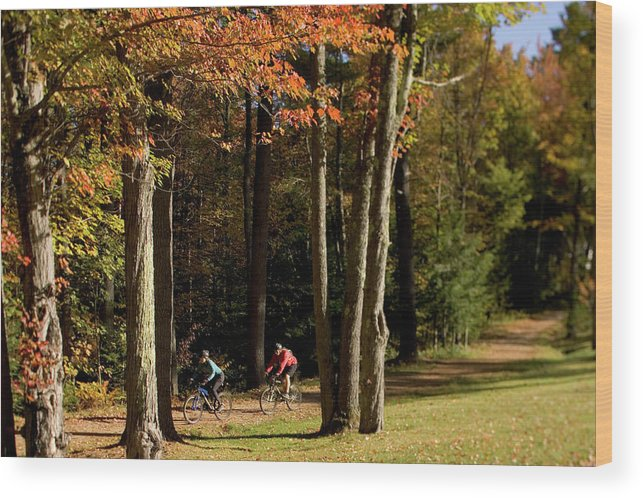 25-30 Years Wood Print featuring the photograph Mountain Bikers Ride In New Gloucester by David McLain