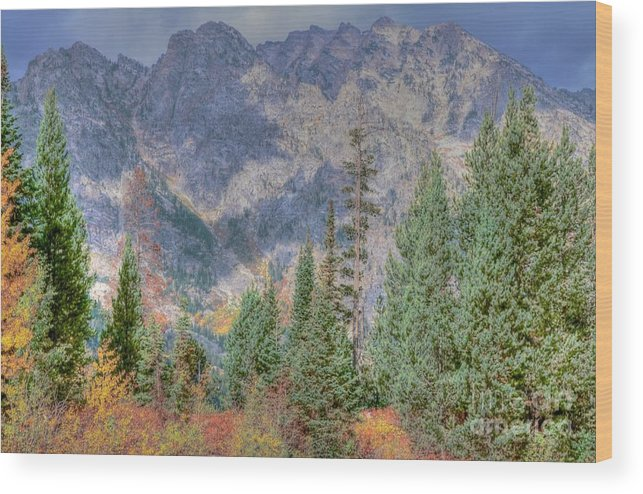 Grand Teton Wood Print featuring the photograph Mountains And Trees by Kathleen Struckle