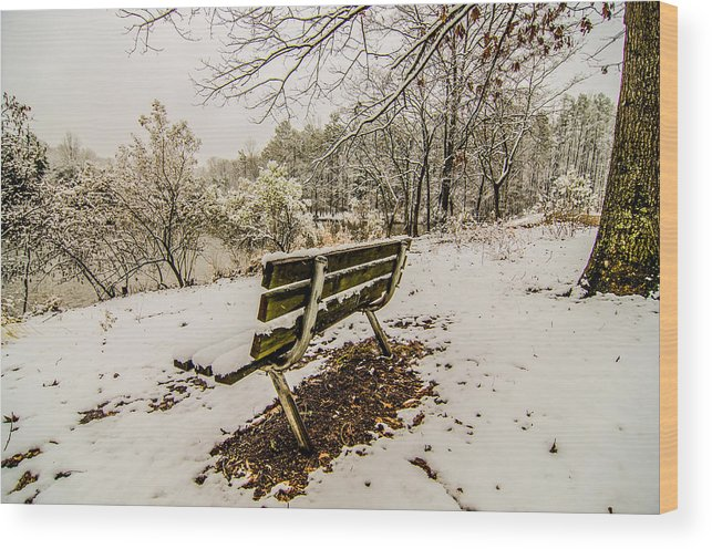 Park Wood Print featuring the photograph Park Bench In The Snow Covered Park Overlooking Lake by Alex Grichenko