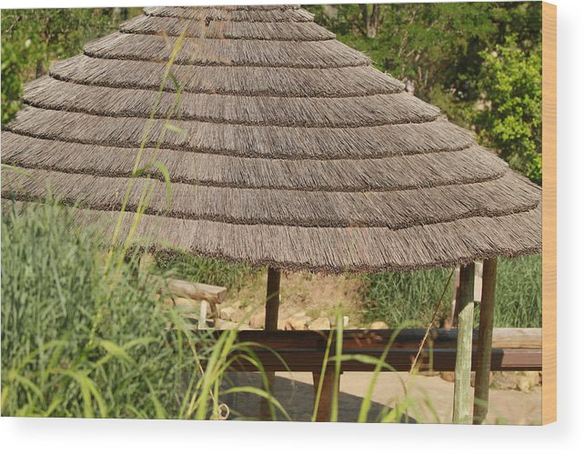 Outdoor Wood Print featuring the photograph Shade by Tinjoe Mbugus