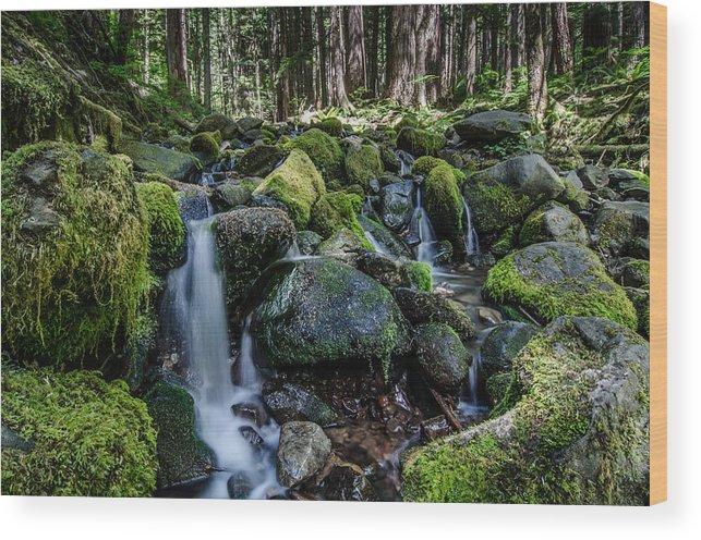 Washington State Wood Print featuring the photograph Sul Duc Creek by Puget Exposure