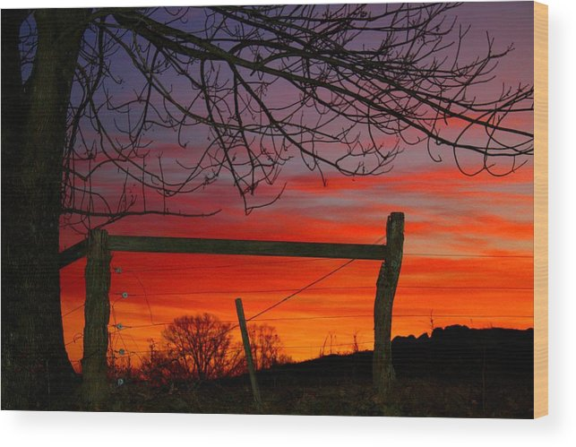 Sunset Wood Print featuring the photograph Sunset Tree by Kathryn Meyer