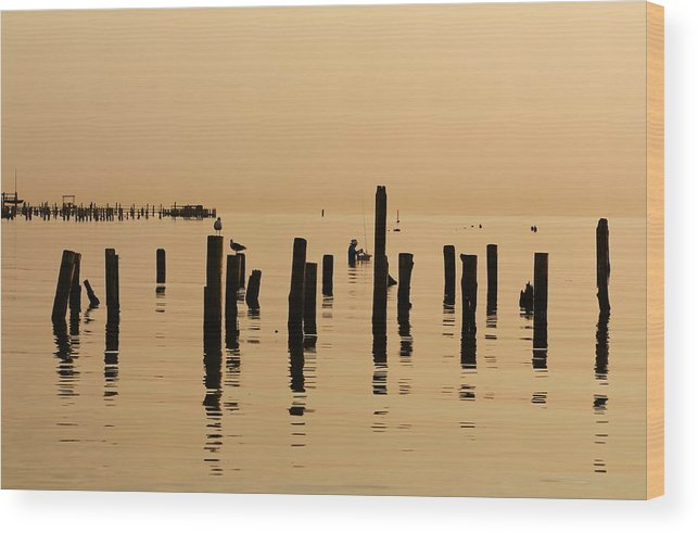 Sunrise Wood Print featuring the photograph The Fisherman by Lisa Comperry