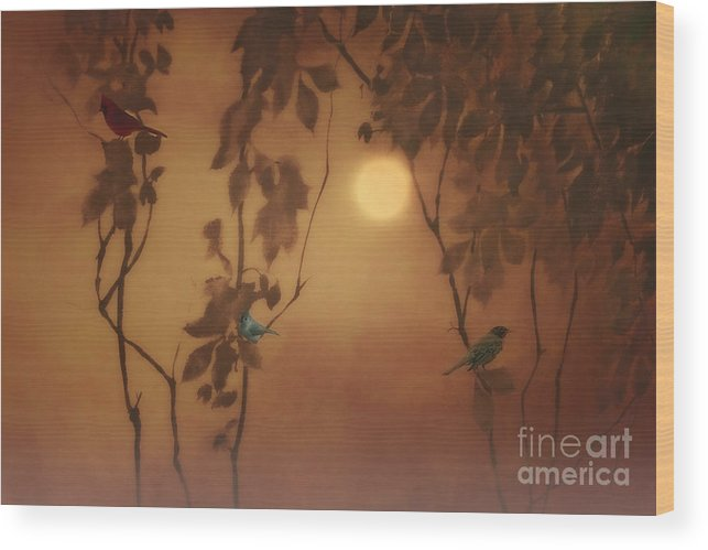 Birds Wood Print featuring the photograph Uncommon Friends by Tom York Images