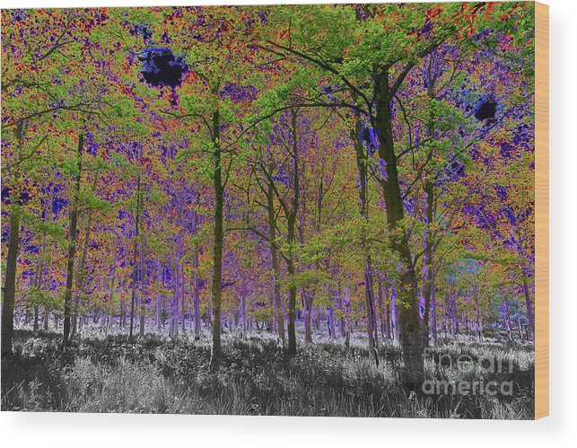 Tree Wood Print featuring the digital art Forest Art by David Pyatt