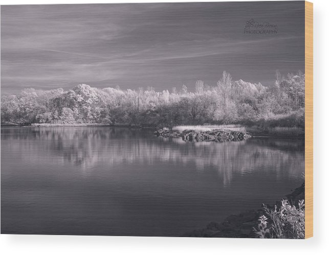 Landscape Wood Print featuring the photograph 136a by Rrea Brown