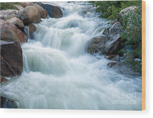 Alluvial Fan Falls Wood Print featuring the photograph Alluvial Fan Falls On Roaring River In Rocky Mountain National Park by Fred Stearns