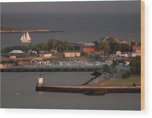 Casco Bay Wood Print featuring the photograph Coastal Life In Maine by Carl D. Walsh