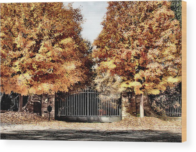 Autumn Wood Print featuring the photograph Gateway by Nadine Lewis