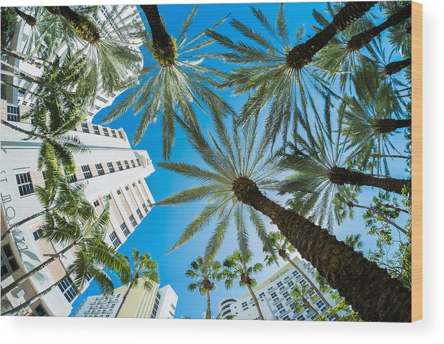 Architecture Wood Print featuring the photograph Miami Beach by Raul Rodriguez