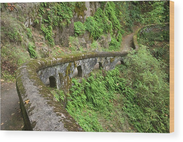 Cliff Wood Print featuring the photograph Usa, Oregon, Columbia River Gorge by Jaynes Gallery