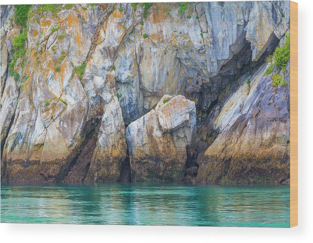 Alaska Wood Print featuring the photograph Usa, Alaska, Glacier Bay National Park by Jaynes Gallery