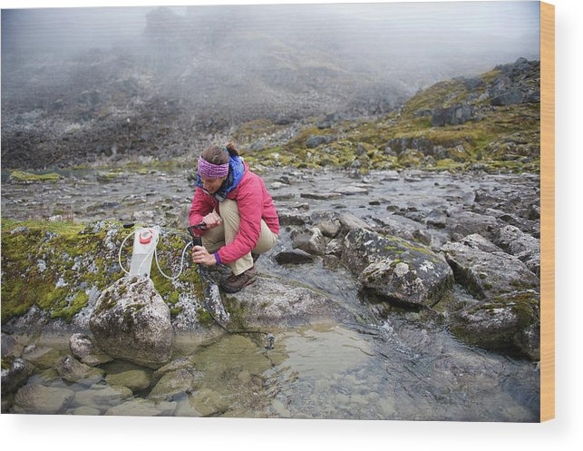 Food And Drink Wood Print featuring the photograph Backpacking In Alaska Talkeetna by HagePhoto