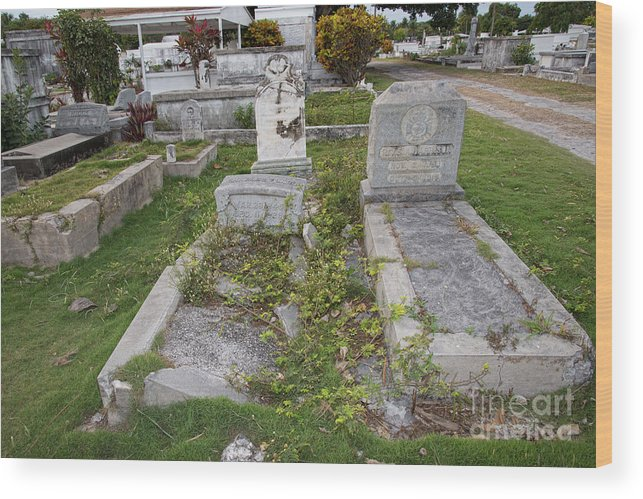 Cemetery Wood Print featuring the digital art Key West Cemetery by Carol Ailles