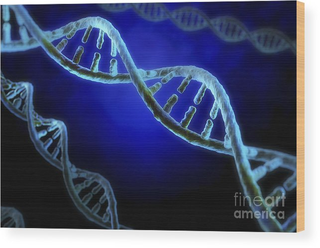 Digitally Generated Image Wood Print featuring the photograph Dna by Science Picture Co