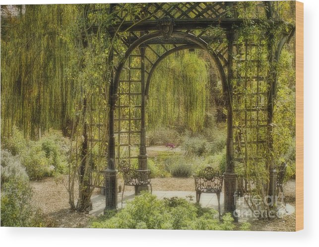 Gazebo Wood Print featuring the photograph A Beautiful Place To Relax And Reflect by Peggy Hughes