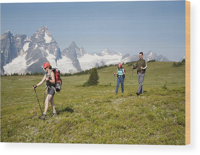 Adult Wood Print featuring the photograph A Group Of Hikers In The Selkirk by Dan Shugar