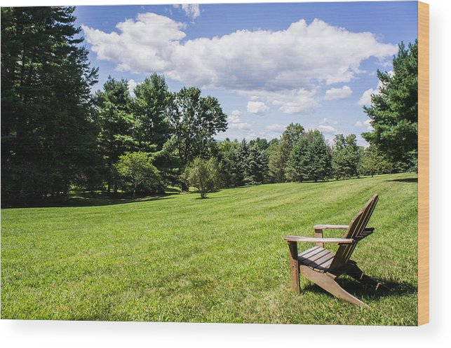 Park Wood Print featuring the photograph A Lone Chair In August by Diana Weir