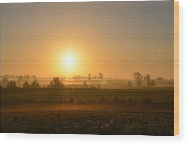 Spring Wood Print featuring the photograph A Spring Morning At Gettysburg by Bill Cannon