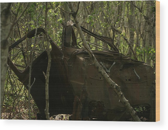 Automobile Wood Print featuring the photograph Abandoned Car In A Forest by Robert Hamm